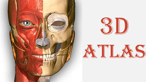 Download Anatomy learning - 3D atlas - free Education Android app for phones and tablets.