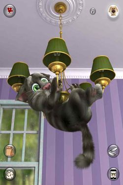 Download app for iOS Talking Tom Cat 2, ipa full version.