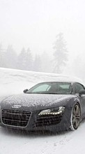 New 1024x768 mobile wallpapers Audi, Auto, Transport free download.