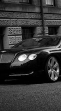 New 800x480 mobile wallpapers Transport, Auto, Bentley free download.