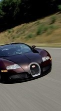 New 360x640 mobile wallpapers Transport, Auto, Bugatti free download.