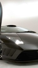 New 360x640 mobile wallpapers Transport, Auto, Lamborghini free download.