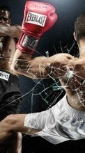 Boxing,People,Men,Sports for ZTE ZMAX