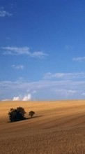 New 240x320 mobile wallpapers Landscape, Fields free download.