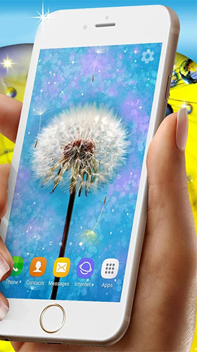 Download Dandelions free With clock livewallpaper for Android phone and tablet.