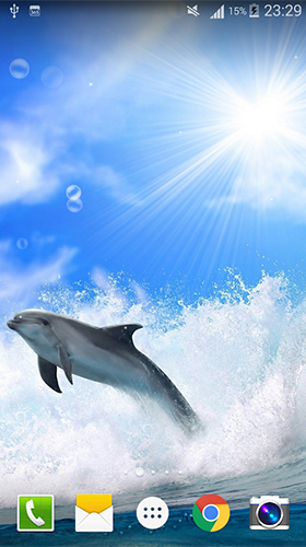 Download Dolphin by Live wallpaper HD free Aquariums livewallpaper for Android phone and tablet.