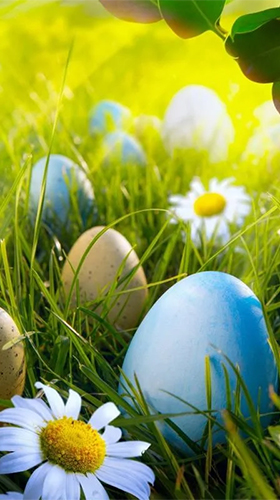 Download Easter by HQ Awesome Live Wallpaper free Holidays livewallpaper for Android phone and tablet.