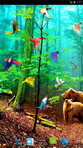 Download Forest birds free Plants livewallpaper for Android phone and tablet.
