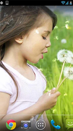 Download Girl and dandelion free People livewallpaper for Android phone and tablet.