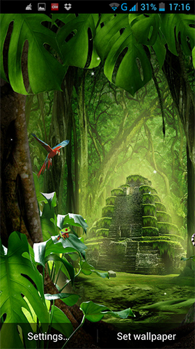 Download Jungle by LWP World free Plants livewallpaper for Android phone and tablet.