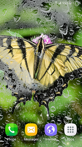 Download Macro butterflies free Animals livewallpaper for Android phone and tablet.