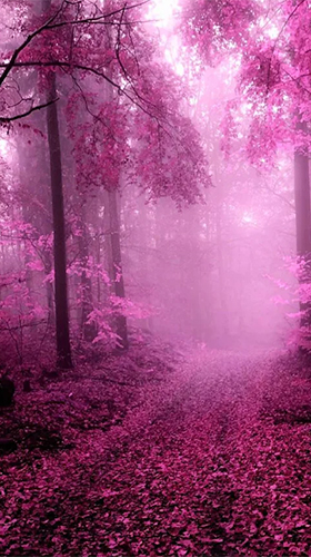 Download Pink forest free Fantasy livewallpaper for Android phone and tablet.