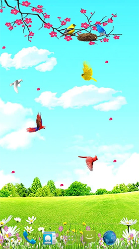 Download livewallpaper Sky birds for Android.
