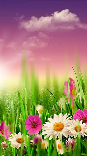 Download Spring by HQ Awesome Live Wallpaper free Landscape livewallpaper for Android phone and tablet.