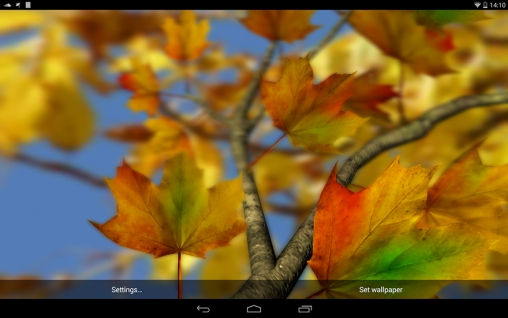 Download Autumn leaves 3D by Alexander Kettler free livewallpaper for Android 4.2.2 phone and tablet.