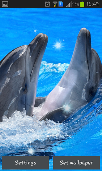 Download Dolphins free livewallpaper for Android 4.0.1 phone and tablet.