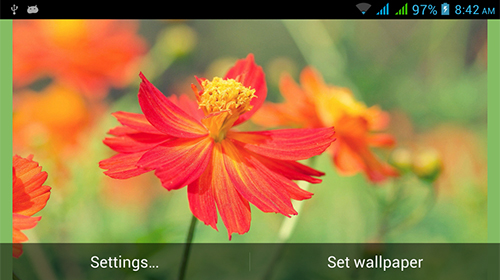 Nature HD by Live Wallpapers Ltd. apk - free download.