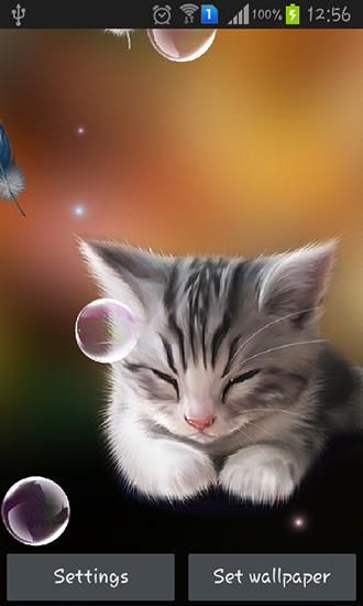 Download Sleepy kitten free livewallpaper for Android 4.1.2 phone and tablet.