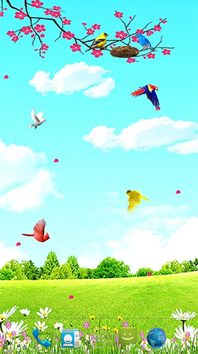 Screenshots of the live wallpaper Sky birds for Android phone or tablet.