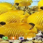 Aquarium by Top Live Wallpapers apk - download free live wallpapers for Android phones and tablets.