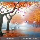 Download live wallpaper Autumn by 3D Top Live Wallpaper for free and Blue skies for Android phones and tablets .