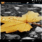 Download live wallpaper Autumn wallpapers by Infinity for free and Snow winter for Android phones and tablets .