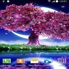 Cherry in blossom apk - download free live wallpapers for Android phones and tablets.