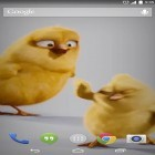 Chickens apk - download free live wallpapers for Android phones and tablets.