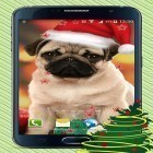 Christmas dogs apk - download free live wallpapers for Android phones and tablets.