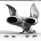 Download Crazy dog free livewallpaper for Android phones and tablets.