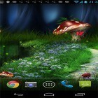 Download live wallpaper Firefly by orchid for free and Night mountains for Android phones and tablets .