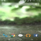 Real rain apk - download free live wallpapers for Android phones and tablets.