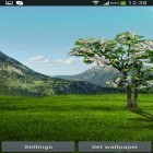 Download live wallpaper Sakura by DIVARC GROUP for free and Spring landscape for Android phones and tablets .