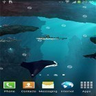 Sharks 3D by BlackBird Wallpapers apk - download free live wallpapers for Android phones and tablets.