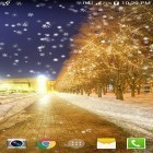 Download live wallpaper Snowy night by Live wallpaper HD for free and Snow winter for Android phones and tablets .
