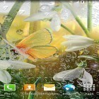 Spring by Amax LWPS apk - download free live wallpapers for Android phones and tablets.