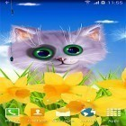 Spring cat apk - download free live wallpapers for Android phones and tablets.