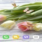Download live wallpaper Tulips by Live Wallpapers 3D for free and Hearts by Kittehface Software for Android phones and tablets .