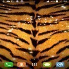 Download live wallpaper Animal print for free and Sea for Android phones and tablets .
