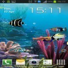 Aquarium by Cowboys apk - download free live wallpapers for Android phones and tablets.