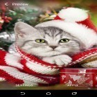 Download live wallpaper Christmas animals for free and Stonehenge 3D for Android phones and tablets .