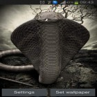 Download live wallpaper Cobra for free and The Moon paradise for Android phones and tablets .