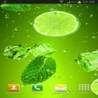 Download live wallpaper Cocktails and drinks for free and Fireflies by Jango LWP Studio for Android phones and tablets .