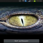 Download live wallpaper Crocodile eyes for free and Fantasy swamp for Android phones and tablets .
