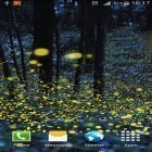 Download live wallpaper Fireflies by Phoenix Live Wallpapers for free and Fire tornado for Android phones and tablets .