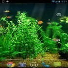 Fishbowl apk - download free live wallpapers for Android phones and tablets.