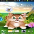 Download live wallpaper Kitten for free and Nature by Creative Factory Wallpapers for Android phones and tablets .