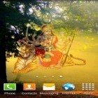 Download live wallpaper Magic Durga & temple for free and Snow winter for Android phones and tablets .