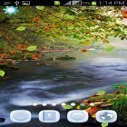 Download live wallpaper Magic nature for free and Fire tornado for Android phones and tablets .