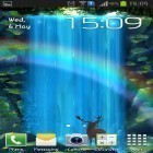 Download live wallpaper Mystic waterfall for free and Sakura pro for Android phones and tablets .